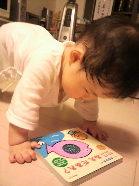 国語講師の学習ブログ ~札幌発!こくごの教室-2010082120280000.jpg