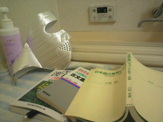 国語講師の学習ブログ ~札幌発!こくごの教室-2011013011460000.jpg