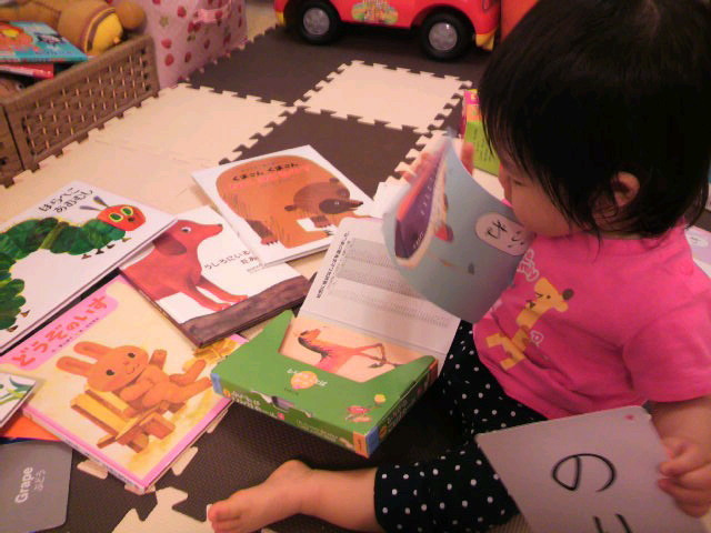 国語講師の学習ブログ ~札幌発!こくごの教室-2011060919010000.jpg